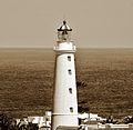 Faro de Punta del Este (vista aerea).JPG