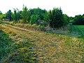 Feistenberg Pirna - panoramio (1).jpg