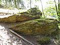 Felsen in der Dehl (Hoch-Weisel) 03.JPG