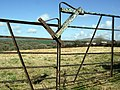 Field and gate near Colston - geograph.org.uk - 1811991.jpg