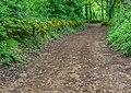 Field road in Bezonnes (2).jpg