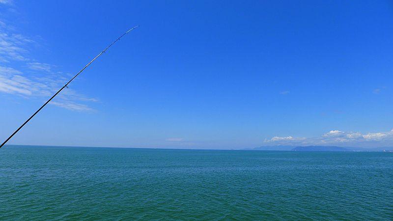 File:Fishing Pole.jpg