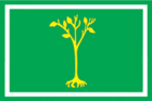 Flag of Chertanovo Center (municipality in Moscow).png