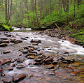Flickr - Nicholas T - Kitchen Creek (1).jpg