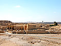 Flickr - archer10 (Dennis) - Egypt-12B-066.jpg