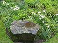 Flickr - brewbooks - Streissguth Gardens - Seattle (5).jpg