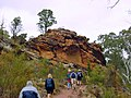 Flinders Range, Wilpena Pound Walking Trails - panoramio.jpg