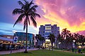 Florida International University.jpg