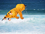 Flying tiger - Festival of the Winds 2012.jpg