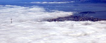 Only downtown San Francisco and Sutro tower are free from fog
