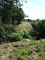 Footbridge And Field Boundary - geograph.org.uk - 537430.jpg