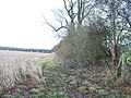 Footpath meets bridleway - geograph.org.uk - 1587763.jpg