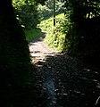 Footpath near Gwarllwyneidos - geograph.org.uk - 1357181.jpg