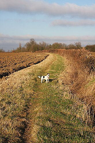 Lawshall Green - Footpath to Lawshall Green - part of St Edmund Way