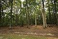Forêt Départementale de Méridon à Chevreuse le 29 septembre 2017 - 01.jpg