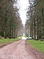 Formal avenue, Blair Castle - geograph.org.uk - 1238386.jpg