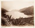 Fotografi från Lago di Lecco, Italien - Hallwylska museet - 107336.tif