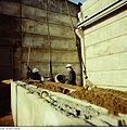 Fotothek df n-22 0000020 Baufacharbeiter, Lagerhalle.jpg