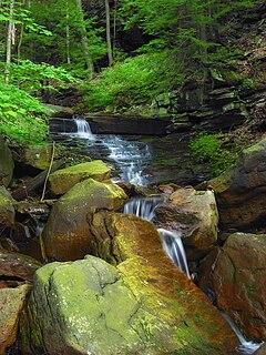 Franklin Township, Bradford County, Pennsylvania Township in Pennsylvania, United States
