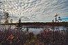 Franz Jevne State Park - Rainy River, Minnesota US-Canada Border.jpg