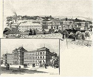 Franz Joseph University - The Franz Joseph University with the view of Kolozsvár around 1900
