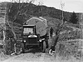Front on view of a Leyland truck transporting a piece of Kauri along a dirt road (AM 75783-1).jpg