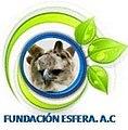 FundacionEsfera.jpg