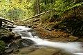 Górski potok - panoramio.jpg