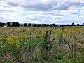 GOC Letchworth 060 Countryside (40755936174).jpg