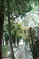 Garten der Villa Bomonti DSC05875.jpg