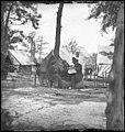 Gen. Ambrose E. Burnside (reading newspaper) with Mathew B. Brady (nearest tree) at Army of the Potomac headquarters LOC cwpb.01702.jpg