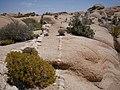 Geologic formations at Skull Rock (29042089136).jpg