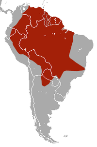 Distribución do armadillo xigante.