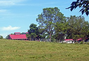 Gilfillan Farm