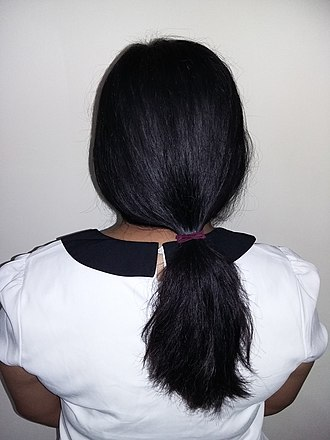 Human hair color - Image: Girl with long black hair (ponytail), rear view