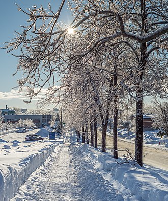 January–February 2019 North American cold wave - January 25, 2019 in Quebec