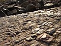 Glowing cobblestones slope down to the beach - geograph.org.uk - 361379.jpg