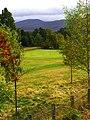 Golf - panoramio (5).jpg