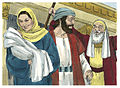 Gospel of Luke Chapter 2-9 (Bible Illustrations by Sweet Media).jpg