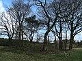 Grabhügel (barrow) - panoramio.jpg