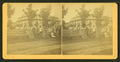Group portrait of health resort visitors, from Robert N. Dennis collection of stereoscopic views.png