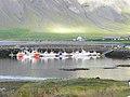 Grundarfjörður - panoramio (9).jpg