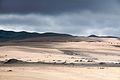 Guadalupe-Nipomo Dunes (5222442974) (2).jpg