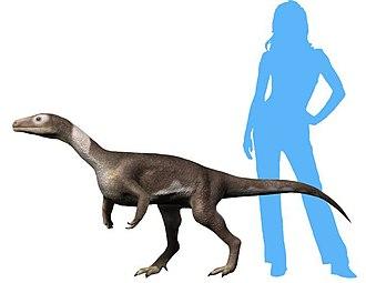 Guaibasaurus - Restoration
