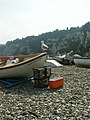 Gull and boats, Beer - geograph.org.uk - 231511.jpg