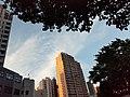 HK ML Mid-Levels Pokfulam Road June 2021 SS2 09.jpg