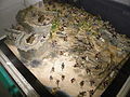 HK SKW Museum of Coastal Defence HKMCD 沙角炮台 06 Dongguan Diorama showing the Battle of Shajiao Battery Jan-1841.JPG