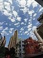 HK SW 上環 Sheung Wan 太平山街 Tai Ping Shan Street 卜公花園 Blake Garden view blue sky January 2020 SS2 03.jpg