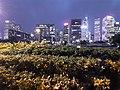 HK Wan Chai North to Central 灣仔海濱長廊 Waterfront Promenade walk October 2020 SS2 16.jpg