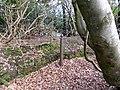Ha-ha, Ballochmyle House, Mauchline, East Ayrshire.jpg
